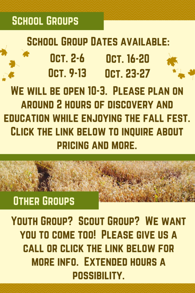 Twolick, Nursery, Fall Fest, Corn Maze, Field Trip, School, Youth Group, Boy Scouts, Girl Scouts, Corn Maze